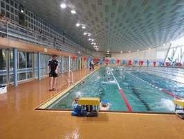 Training in der Schwimmhalle am Freiberger Platz