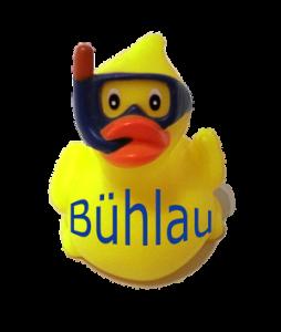 Ente Bühlau