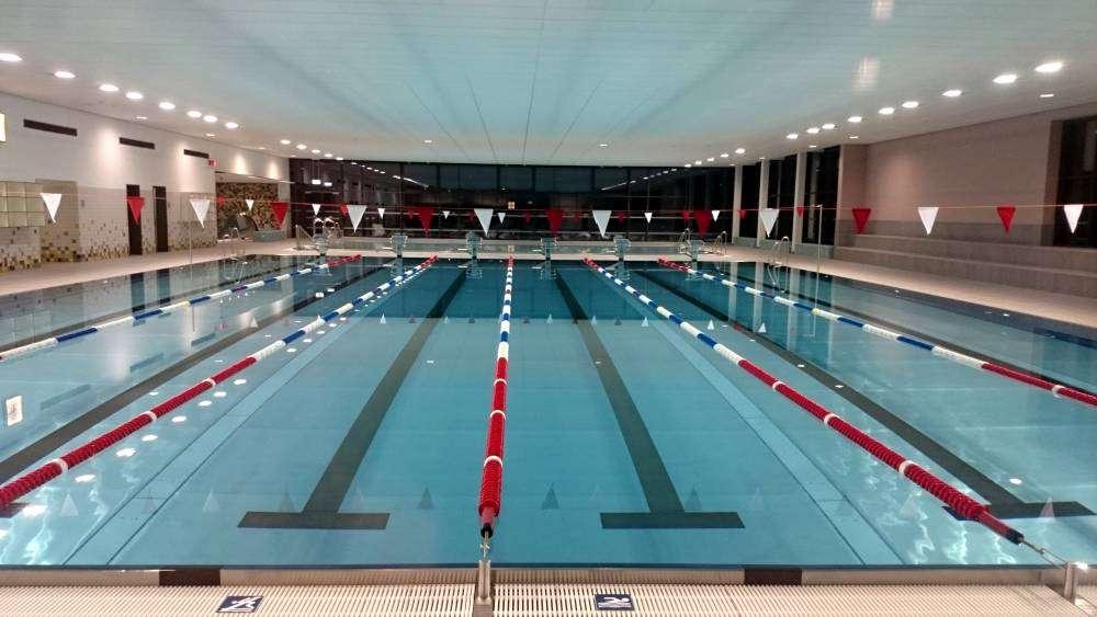 Schwimmtraining beim Schwimmverein Dresden Nord e.V.